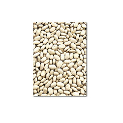 Great northan beans 550gm-arb