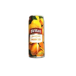 Bvitas juice drink mango 250ml-arb
